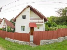 Accommodation Budacu de Sus, Casa Martha Guesthouse