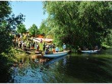 Cazare Sudul Marii Câmpii, Youth Hostel și Camping Napsugár