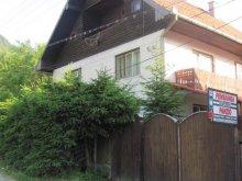 Accommodation Brădețelu, Vártető Guesthouse