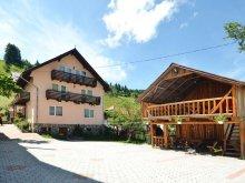 Accommodation Tohanu Nou, Tichet de vacanță, Moecel Vila
