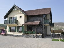 Accommodation Tomușești, Poarta Paradisului Guesthouse