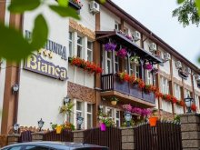 Accommodation Mitoc (Leorda), Bianca Guesthouse