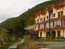 Accommodation Cazanale Dunării, Delfinul Chalet