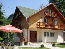 Apartament Alexandru Vlahuță, Pensiunea Madona
