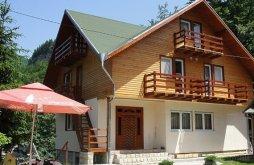 Apartman Topești, Madona Panzió
