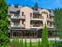 Bed & breakfast Braşov county, Pantheon Guesthouse