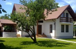 Kulcsosház Domnești-Târg, Dancs Ház