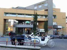 Accommodation Bistrița, Tichet de vacanță, Silva Hotel