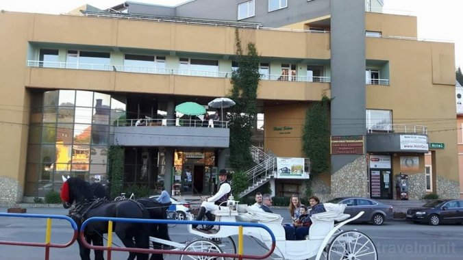 Silva Hotel Vatra Dornei