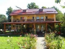 Accommodation Pleșoiu (Livezi), Criveanu Guesthouse