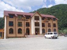 Accommodation Bistrița-Năsăud county, Tichet de vacanță, Sonia Guesthouse