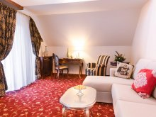 Accommodation Dragomirești, Tichet de vacanță, Hotel Boutique Belvedere