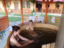Accommodation Biertan, Patakmenti Guesthouse and Villa (SPA)