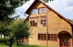 Accommodation Vatra Dornei Ski Slope, Flori de Câmp Guesthouse