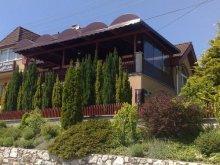 Szállás Közép-Dunántúl, Turul Panzió és Lejtő Club