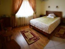 Accommodation Vișina, Topârceanu Vila