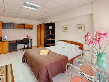 Accommodation 44.521873, 26.030640, Studio Victoriei Square Apartment