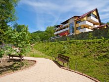 Accommodation Rotunda, Iulia Star Guesthouse