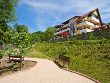 Accommodation Valea Muscelului, Iulia Star Guesthouse