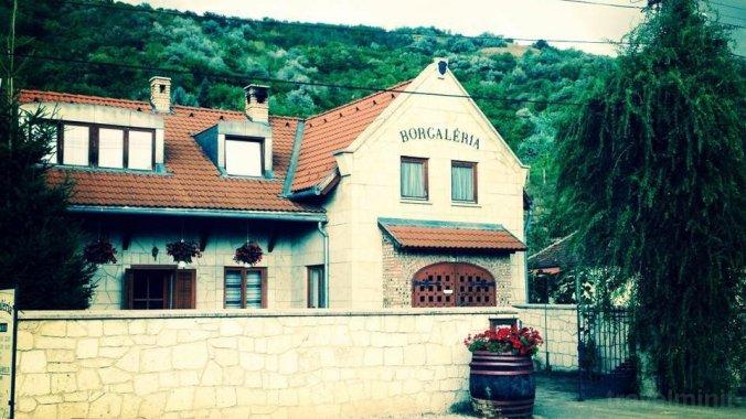 Pensiunea Borgaléria Tokaj