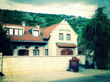 Szállás Tokaj, Borgaléria Panzió