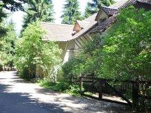 Accommodation Pest county, Mathias Lovasudvar