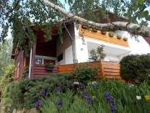 Accommodation Ludas, Nimród Guesthouse