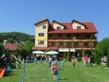 Panzió Prahova megye, Tichet de vacanță, Raza de Soare Panzió
