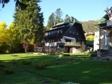 Accommodation Ungureni (Valea Iașului), Draga Vila
