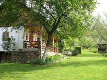 Casă de vacanță Pleșoiu (Nicolae Bălcescu), Casa Rustică