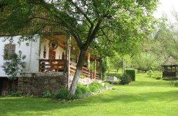 Casă de vacanță Șerbănești (Ștefănești), Casa Rustică