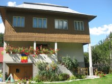 Accommodation Valea Cerbului, Sofia Guesthouse