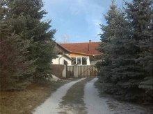 Cazare Kiskinizs, Casa de oaspeți Ildikó