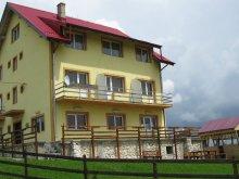 Panzió Felsőmoécs (Moieciu de Sus), Tichet de vacanță, Pui de Urs Panzió
