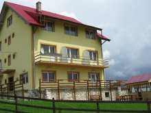 Szállás Argeș megye, Tichet de vacanță, Pui de Urs Panzió