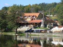 Szállás Dédestapolcsány, Villa Tópart