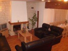 Accommodation Dragoslavele, Ana - Aria Guesthouse
