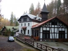 Hotel Dragoslavele, Stavilar Hotel