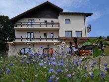 Accommodation Malu (Godeni), Șleaul Mândrului Guesthouse