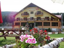 Accommodation Racovița, White Horse Guesthouse