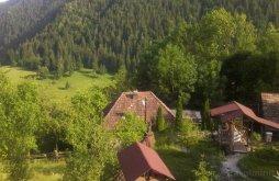 Panzió Pleșcuța, Valea Morii Panzió