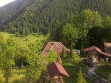 Pensiune Vanvucești, Pensiunea Valea Morii