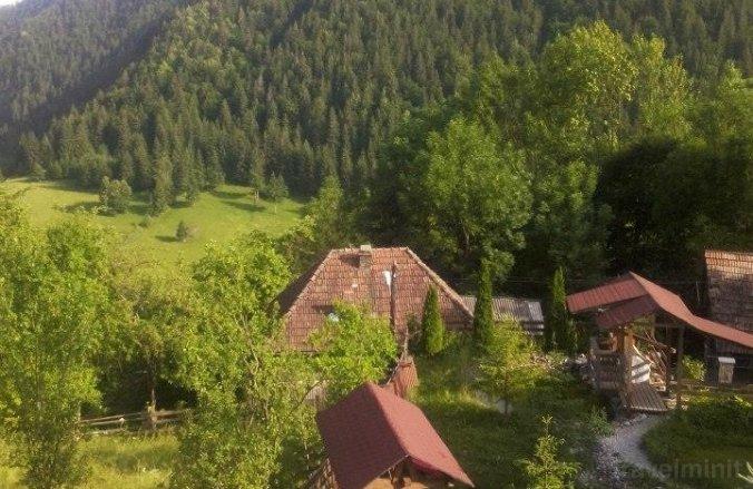 Valea Morii Panzió Pleșcuța