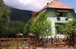 Apartman Tusnádfürdő (Băile Tușnad), Panoráma Panzió