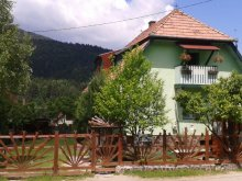 Bed & breakfast Satu Nou (Urechești), Panoráma Guesthouse