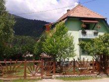 Szállás Bibarcfalva (Biborțeni), Panoráma Panzió