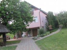Cazare Zalaújlak, Apartament Weinhaus