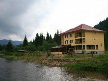 Panzió Havasreketye (Răchițele), Tichet de vacanță, Alex Panzió