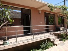 Accommodation Zorile, Megalux House