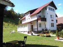 Panzió Alsómoécs (Moieciu de Jos), Vlăduț Panzió